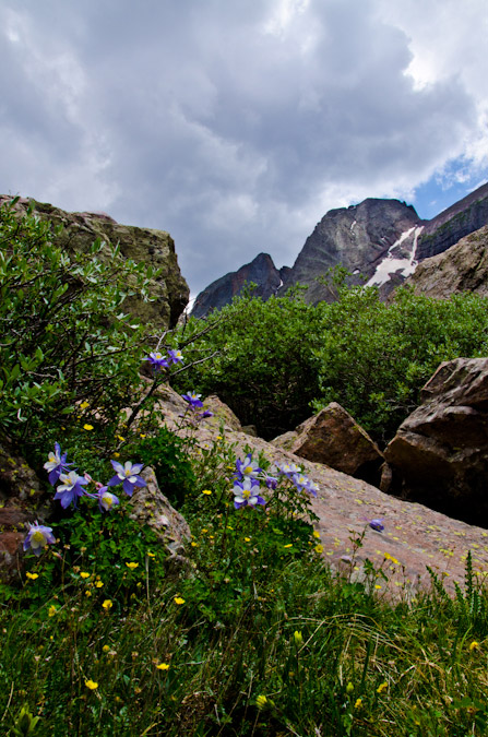 Columbine and Kit Carson Peak