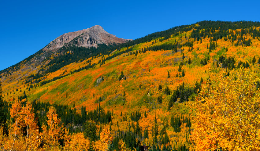 Awesome Colorado Fall Colors