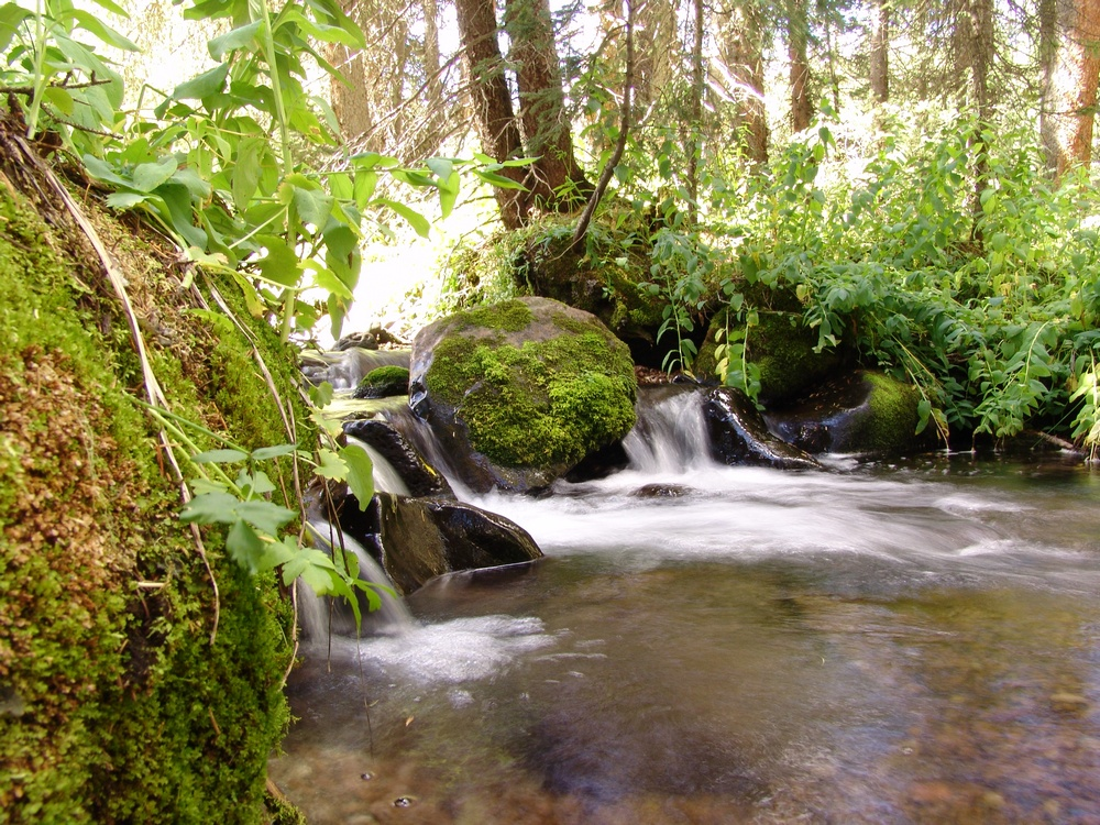 Long Shutter Speed Stream Photo