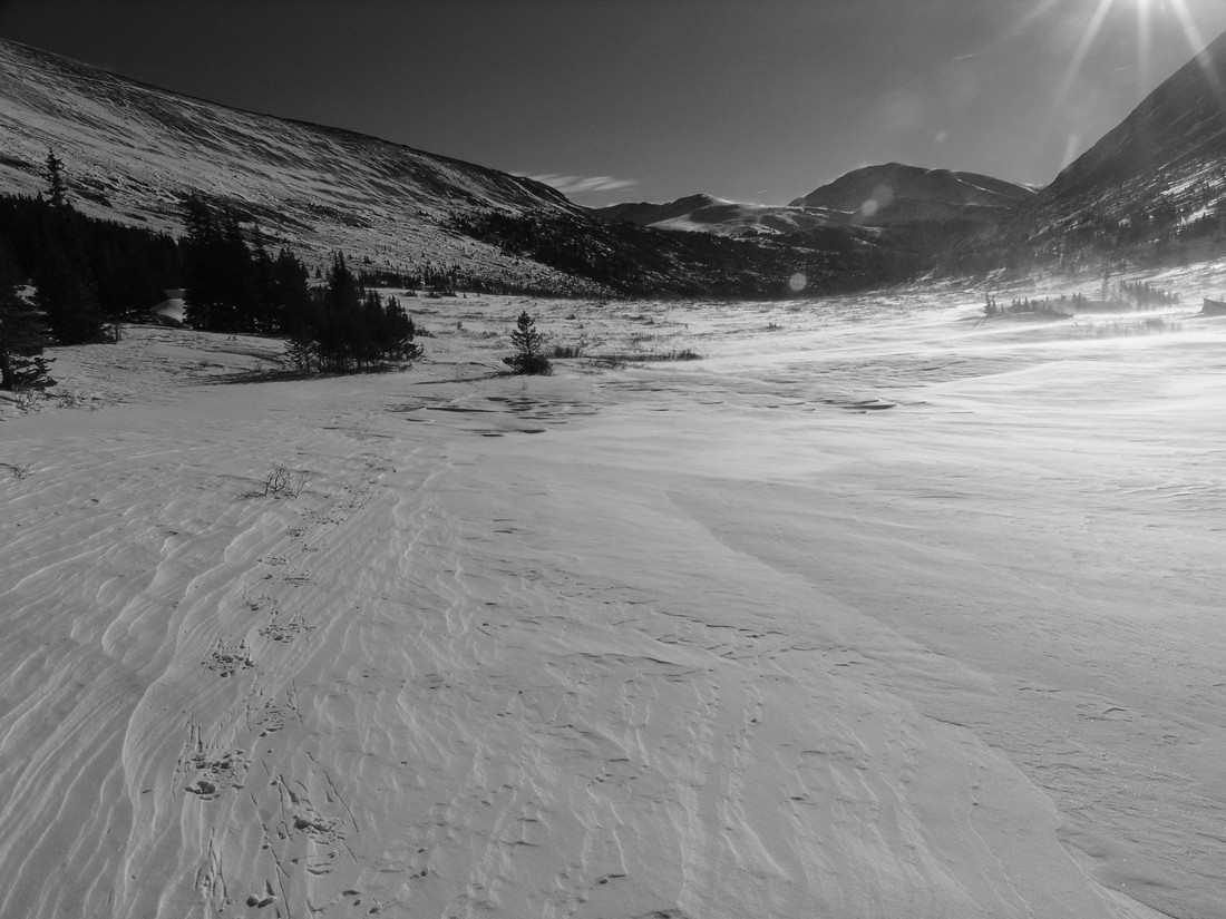 Tracks to Silverheels